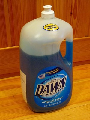 (名無し)さん[1]が投稿したP&G DAWN(ドーン) 食器洗剤の写真