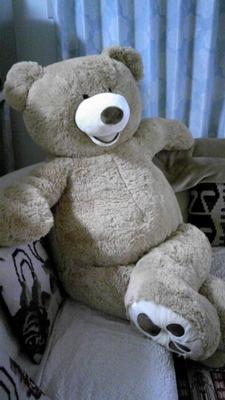 (名無し)さん[98]が投稿したジャイアント テディーベアー(クマのぬいぐるみ 約238cm)の写真