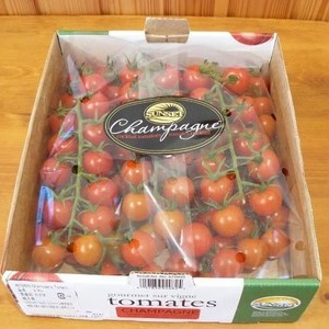 シャンパン トマト