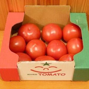 熊本産 トマト