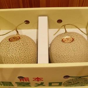 熊本 温室メロン