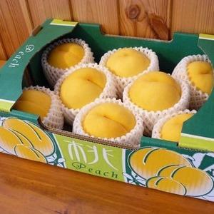 福島産 黄金桃