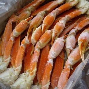 ズワイガニ 生食/加熱/殻付爪