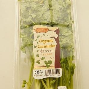 千葉県産 Organic Coriander 香菜パクチー