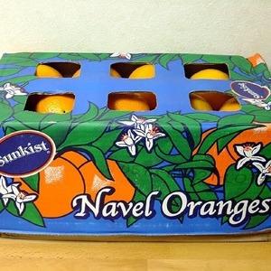 サンキスト ネーブルオレンジ