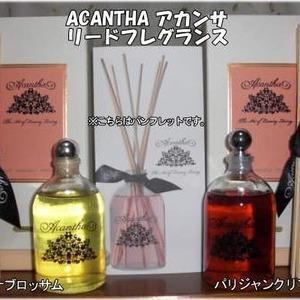 ACANTHA アカンサ リードフレグランス