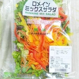 漬浄野菜普及研究所 ロメインミックスサラダ