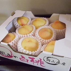 岡山産 白桃