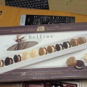Belfine(ベルファイン) サンドウィッチプラリネ チョコレート 288g