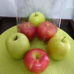 青森産 りんご4種 6個