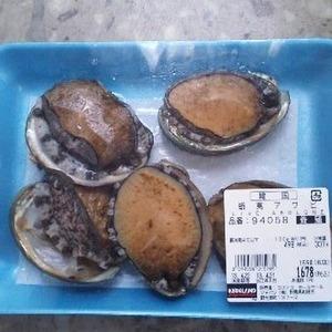 韓国産 蝦夷アワビ 養殖
