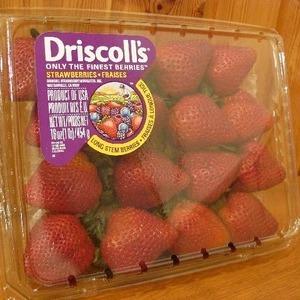 Driscoll's イチゴ