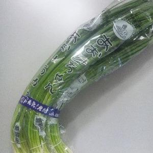 青ねぎ500g(5束)