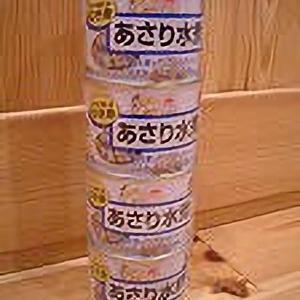 マルハニチロ食品 あけぼの あさり水煮 缶詰
