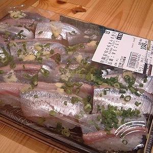 カークランド 秋限定旬の生さんま寿司