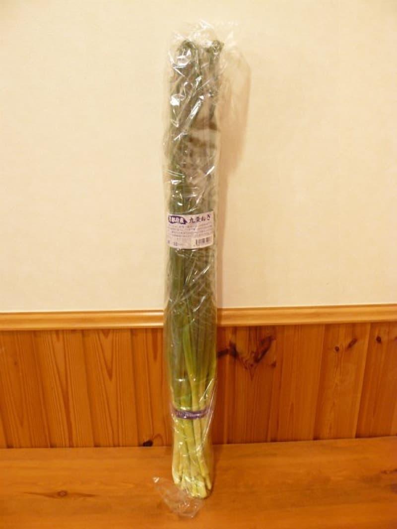 [2]が投稿した京都府産 九条ねぎの写真