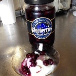DUNDEE FRUIT CONPANY ブルーベリーシロップ漬け