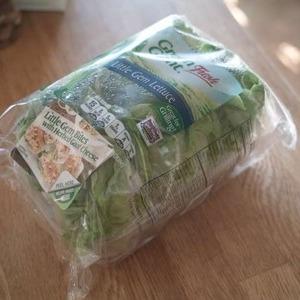 グリーンジャイアント(Green Giant) リトルジェムレタス 6ヶ入りパック