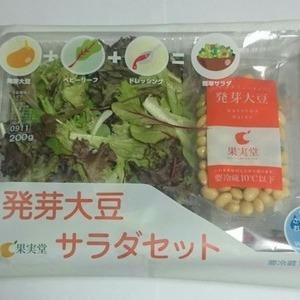 果実堂 発芽大豆 サラダセット