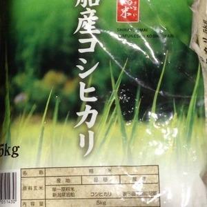 新潟県岩船産 こしひかり 5kg