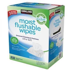 カークランドシグネチャ― 流せるウェットワイプス moist flushable wipes 60枚×10パック