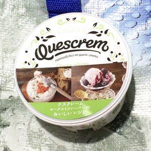 QUESCREM ケスクレーム ヨーグルトフレーバー フレッシュクリームチーズ