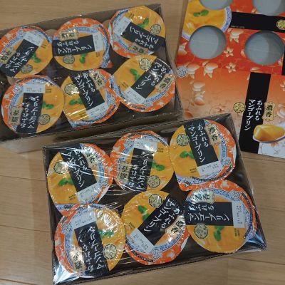 (名無し)さん[2]が投稿した雪印メグミルク アジア茶房 濃厚あふれるマンゴープリン  6個入り×2の写真